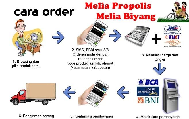 cara-order-melia-propolis-biyang-asli